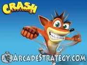Crash Bandicoot Flash icon