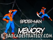 Spiderman - Memory Icon