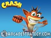 Crash Bandicoot Flash icon