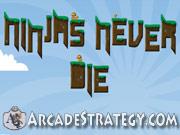 Ninjas Never Die Icon